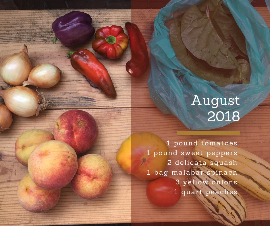 CSA samples for 2019 | Crossroads Community Food Network